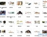 精品收藏百种bet356注册送19_bet356娱乐场网址_bet356怎么打开鱼病图列下载咯!!