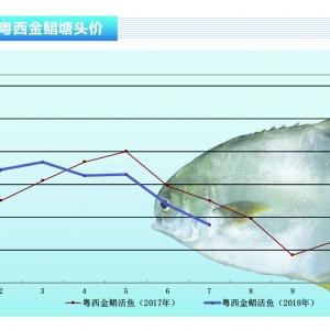 金鲳:新鱼上市,养户理性卖鱼——《bet356注册送19_bet356娱乐场网址_bet356怎么打开前沿》2018年8月刊市场趋势
