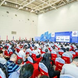 国内对虾产业格局转移,华南市场成进口冻虾增量蓝海