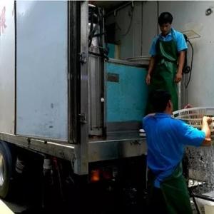暂养工厂助力家鱼增值升级