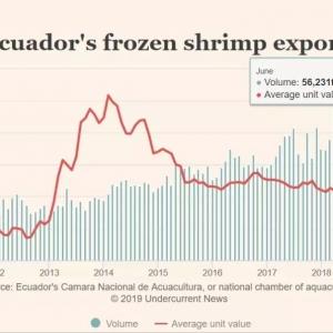 上半年厄瓜多尔白虾出口总量超30万吨,约20万吨卖到中国