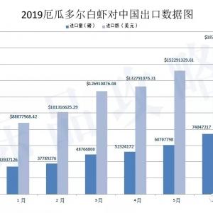中国正关进口数量在不断增加,边贸白虾已得到初步遏制