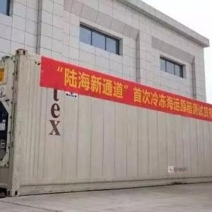 新通道!从胡志明市到重庆,原箱进口巴沙鱼到货节省20天!